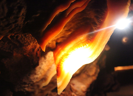 A Kartchner Caverns tour with Gary Tenan