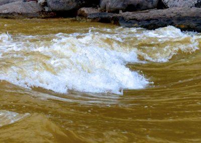Toxic Rapids