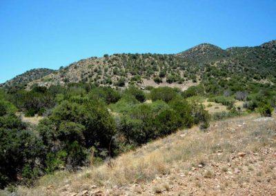 Rosemont Open Pit Site