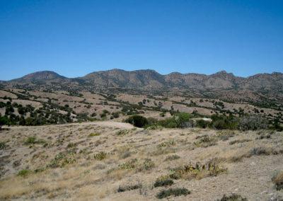 Rosemont Site