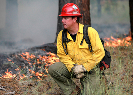 Learning to Manage Wildfire