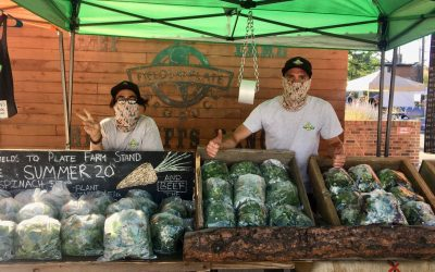 Farmer's Market Adapts to Keep Vendors and Patrons Safe